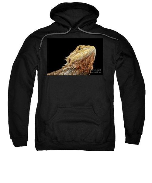 Closeup Head Of Bearded Dragon Llizard, Agama, Isolated Black Background Sweatshirt