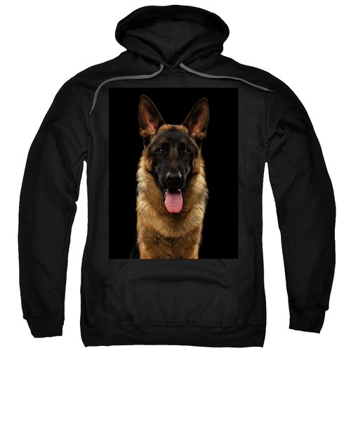 Closeup Portrait Of German Shepherd On Black  Sweatshirt