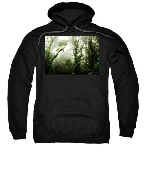 Cloud Forest Sweatshirt