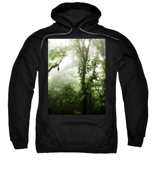Cloud Forest Sweatshirt