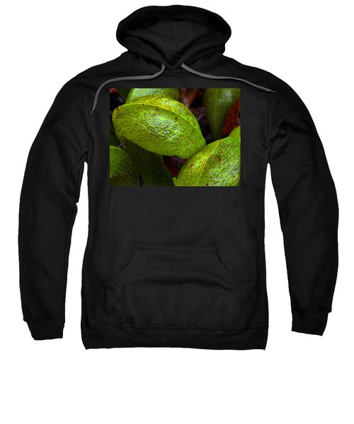 Cobra Lily Love Sweatshirt