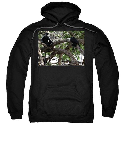 Colobus Monkeys Sitting In A Tree Sweatshirt