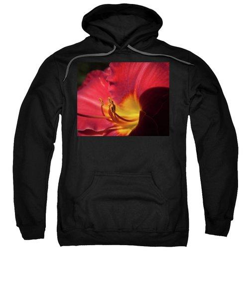 Colorful Cobras Sweatshirt