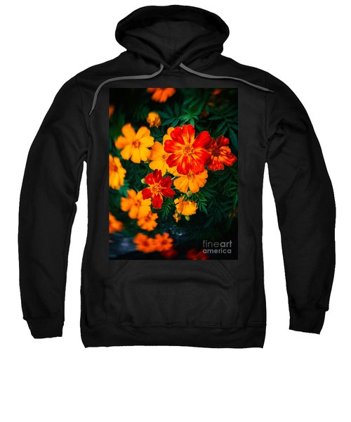 Sweatshirt featuring the photograph Colorful Flowers by Silvia Ganora