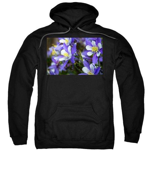 Columbines Sweatshirt