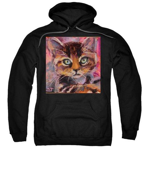 Crazy Cat Tabby  Sweatshirt