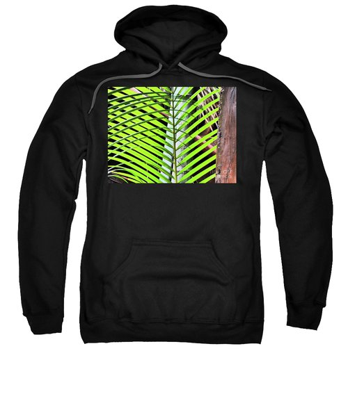 Crisscrossing Palms Sweatshirt