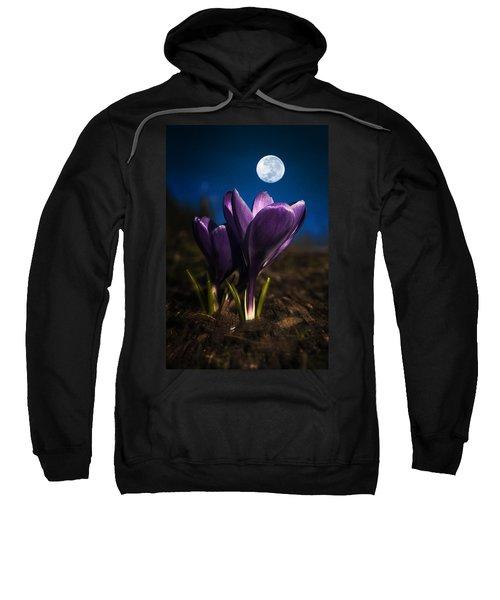 Crocus Moon Sweatshirt