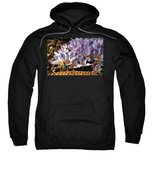 Crocuses Serenade Sweatshirt