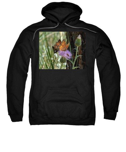Crowded Thistle Sweatshirt