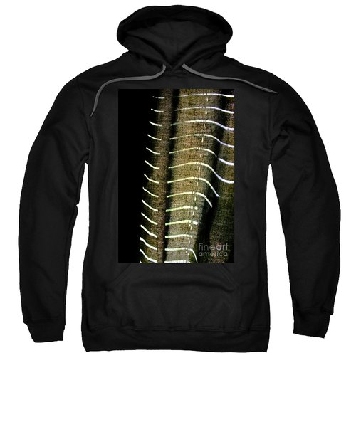 Curvilinear Sweatshirt
