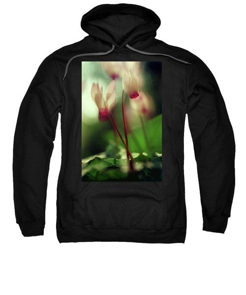 Cyclamens Sweatshirt