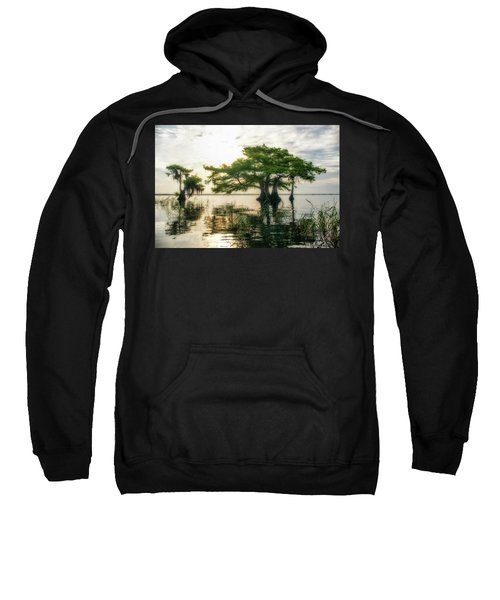 Cypress Bonsai Sweatshirt