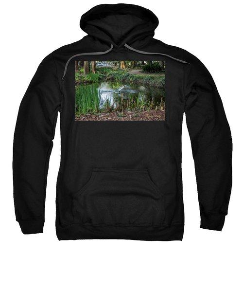Cypress Knees 02 Sweatshirt