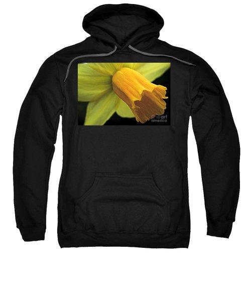 Daffodil - Narcissus - Portrait Sweatshirt