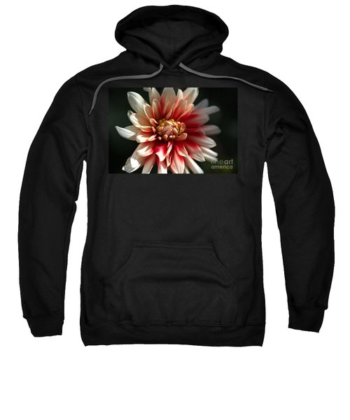 Dahlia Warmth Sweatshirt