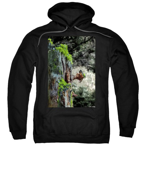 Death And Life Along The Path Sweatshirt