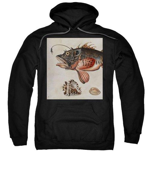 Deep-sea Fish, Crabs And Sea Snails Sweatshirt