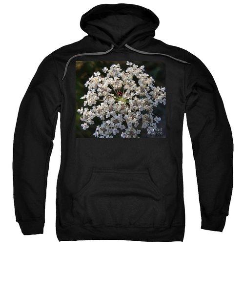 Dew On Queen Annes Lace Sweatshirt