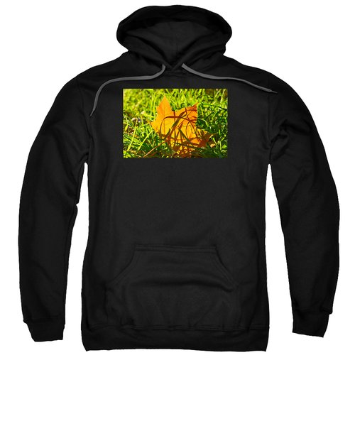 Different Level Sweatshirt