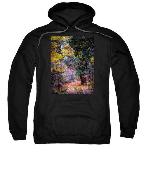 Distant Path Sweatshirt