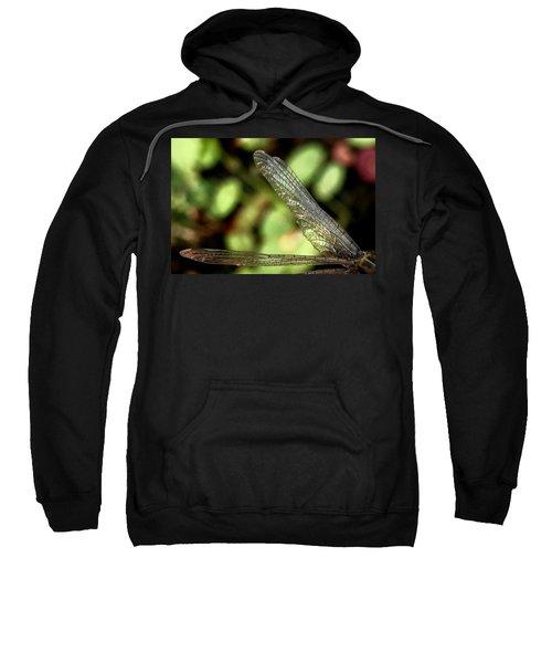Dragon Fly Wings Sweatshirt