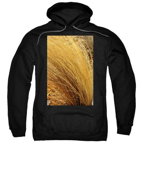 Dried Grass Sweatshirt