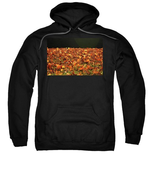 Dry Maple Leaves Covering The Ground Sweatshirt
