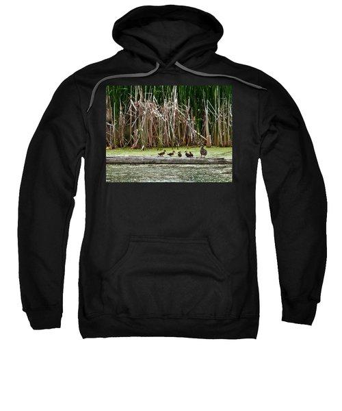Ducks All In A Row Sweatshirt
