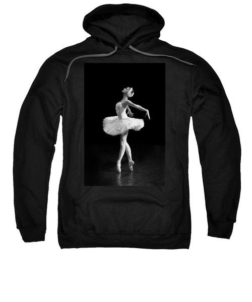 Dying Swan I Alternative Size Sweatshirt