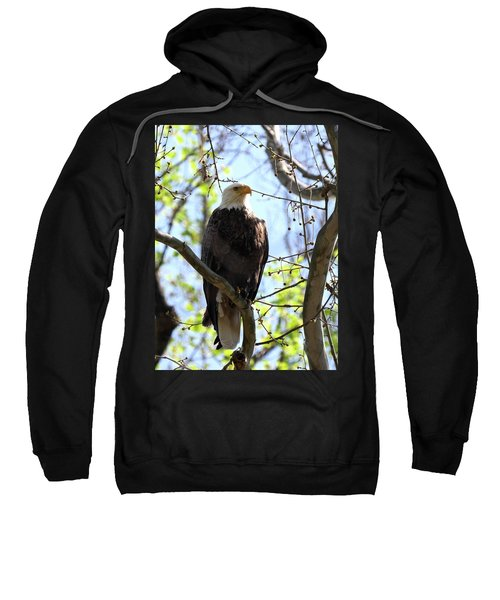 Eagle 1 Sweatshirt