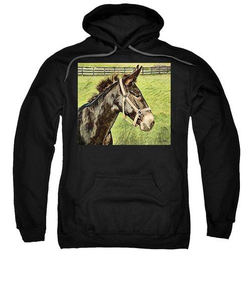 Earistotle Sweatshirt