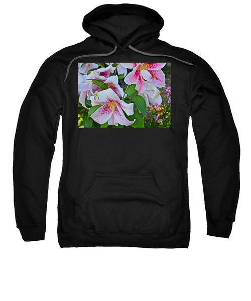 Early August Tumble Of Lilies Sweatshirt