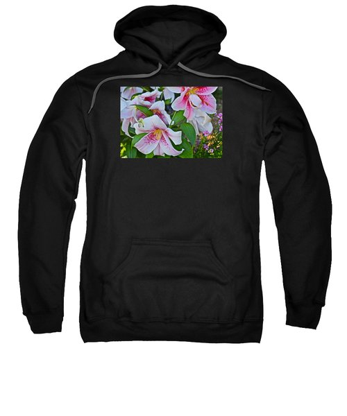 Early August Tumble Of Lilies Sweatshirt