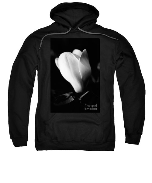 Early Stages Sweatshirt