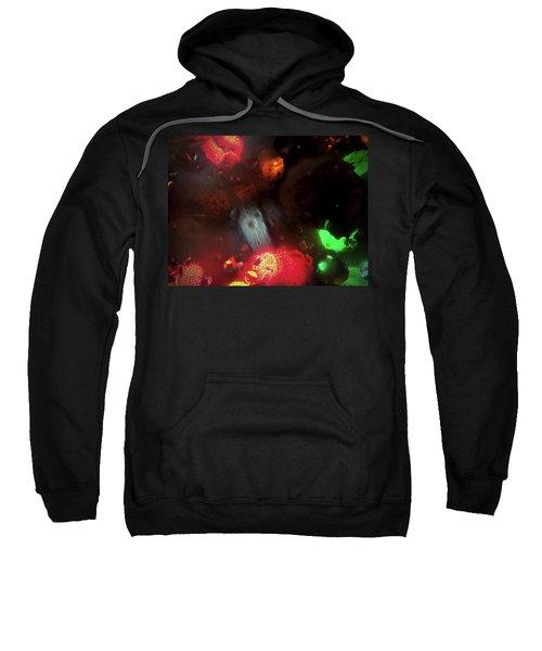 Earth Intruders Sweatshirt