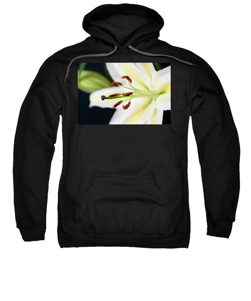 Easter Lily 4 Sweatshirt