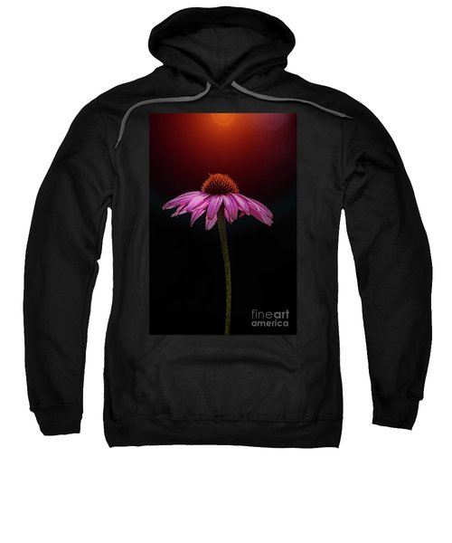 Echinacea And Sun Sweatshirt