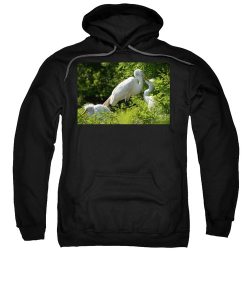 Egrets With Their Young Sweatshirt