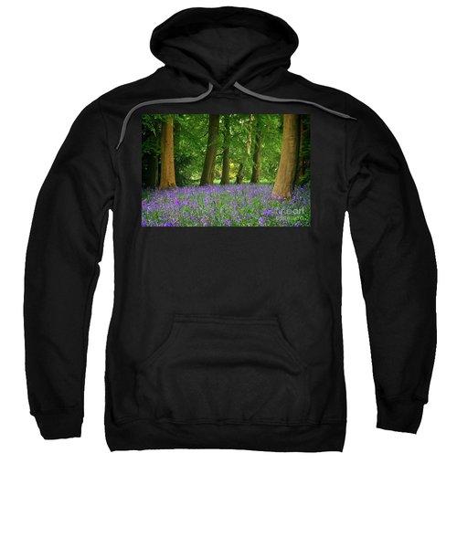 English Bluebell Woodland Sweatshirt