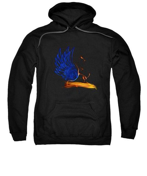 Ethnic Solar Wings Sweatshirt