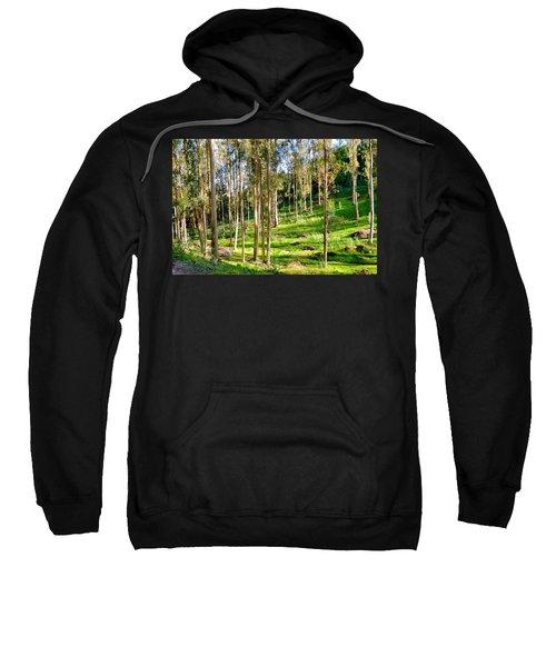 Eucalyptus Sweatshirt