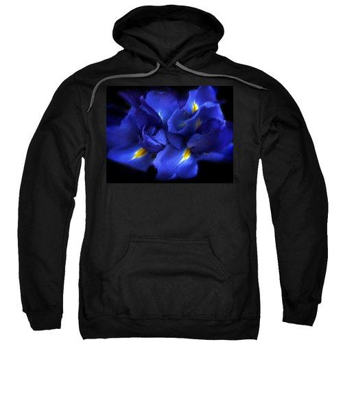 Evening Iris Sweatshirt
