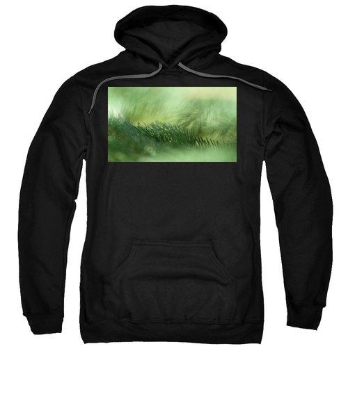 Evergreen Mist Sweatshirt