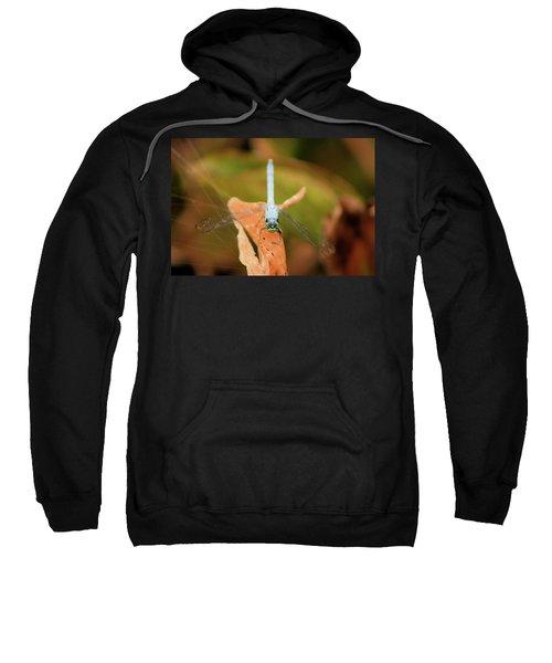 Face Of The Dragon Sweatshirt
