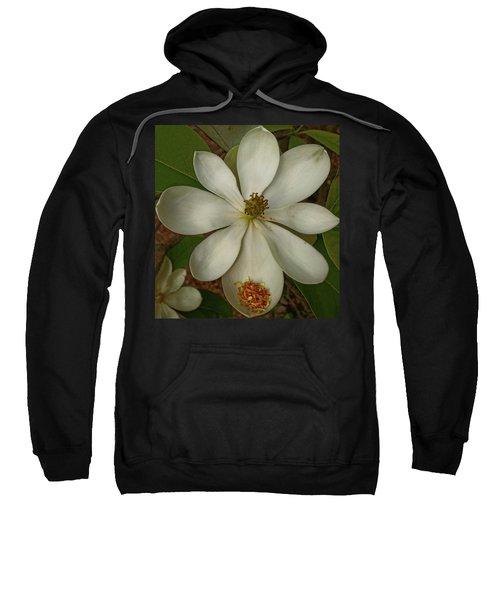 Fading Glory Sweatshirt