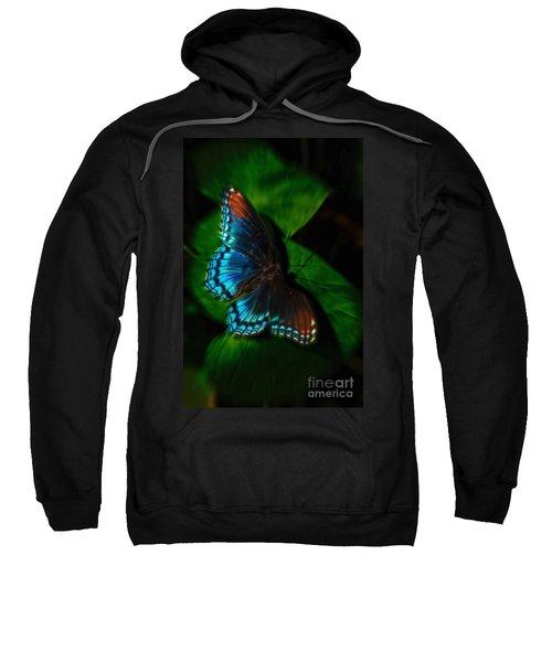 Fall Butterfly Sweatshirt