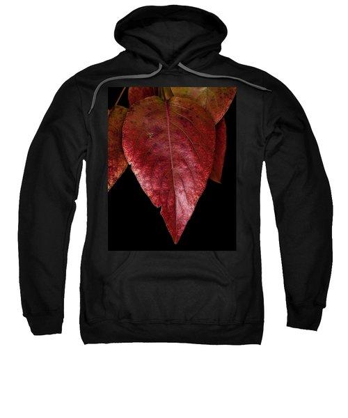 Fall Colors 3 Sweatshirt
