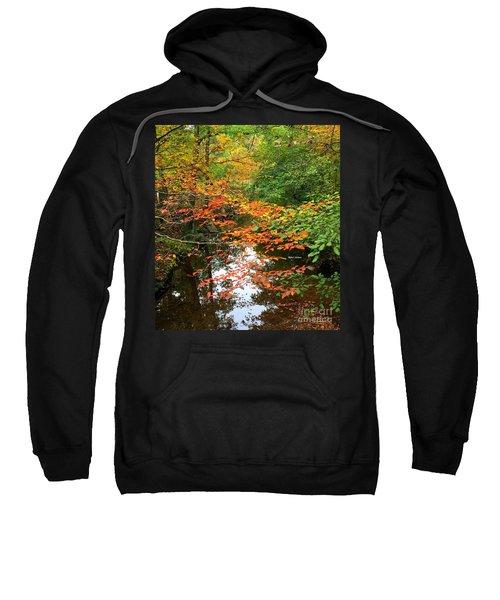Fall Is In The Air Sweatshirt