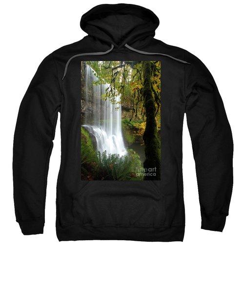 Falls Though The Trees Sweatshirt